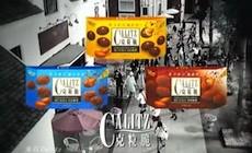 Calitz-poster